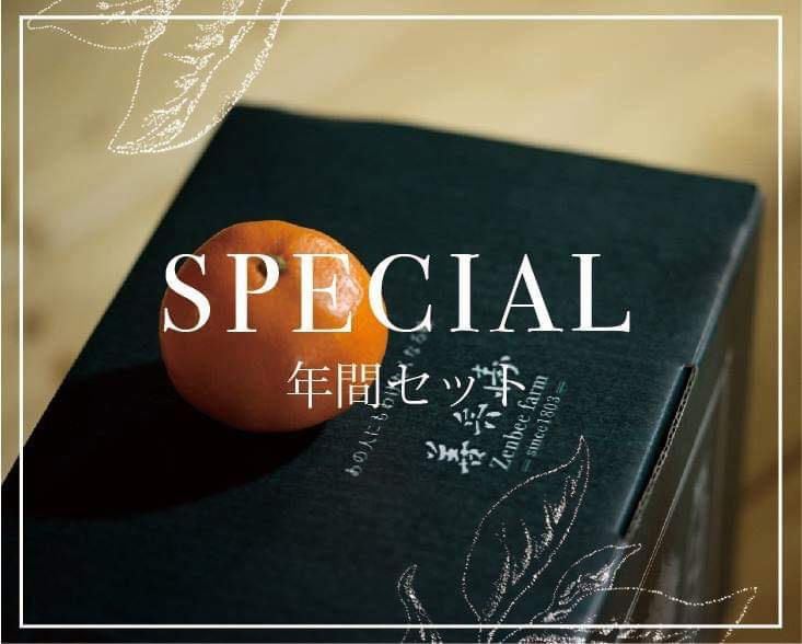SPECIAL年間セット